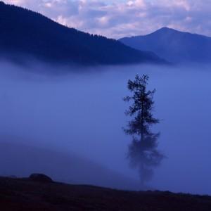 «Утренний туман у озера Канас»