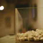 Ночь в музее: Zen Dai MOMA / Фото: Лена Килина